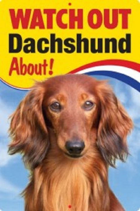 DACHSHUND 3D  DOG SIGN